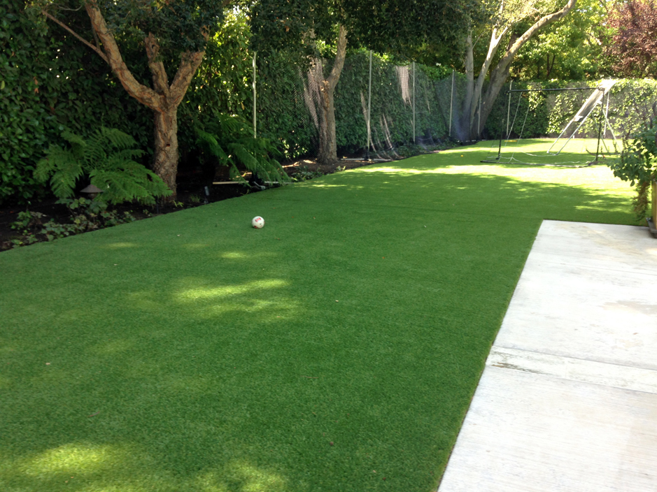 artificial turf cost center hill florida grass for dogs - Synthetic Grass Cost