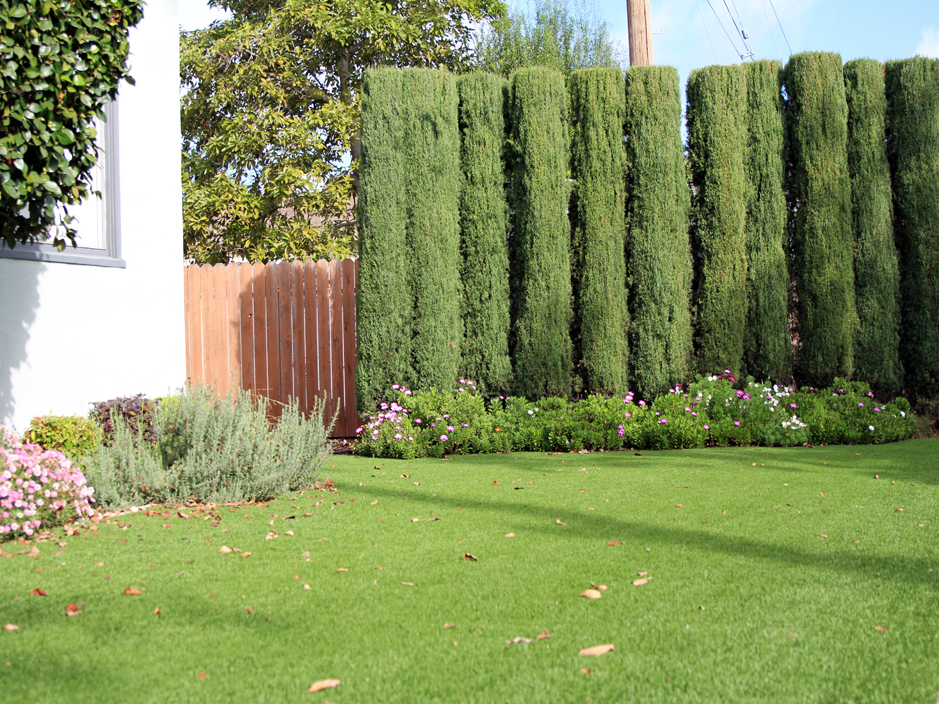 Florida Front Yard Landscaping Ideas Part - 41: Artificial Grass Jacksonville