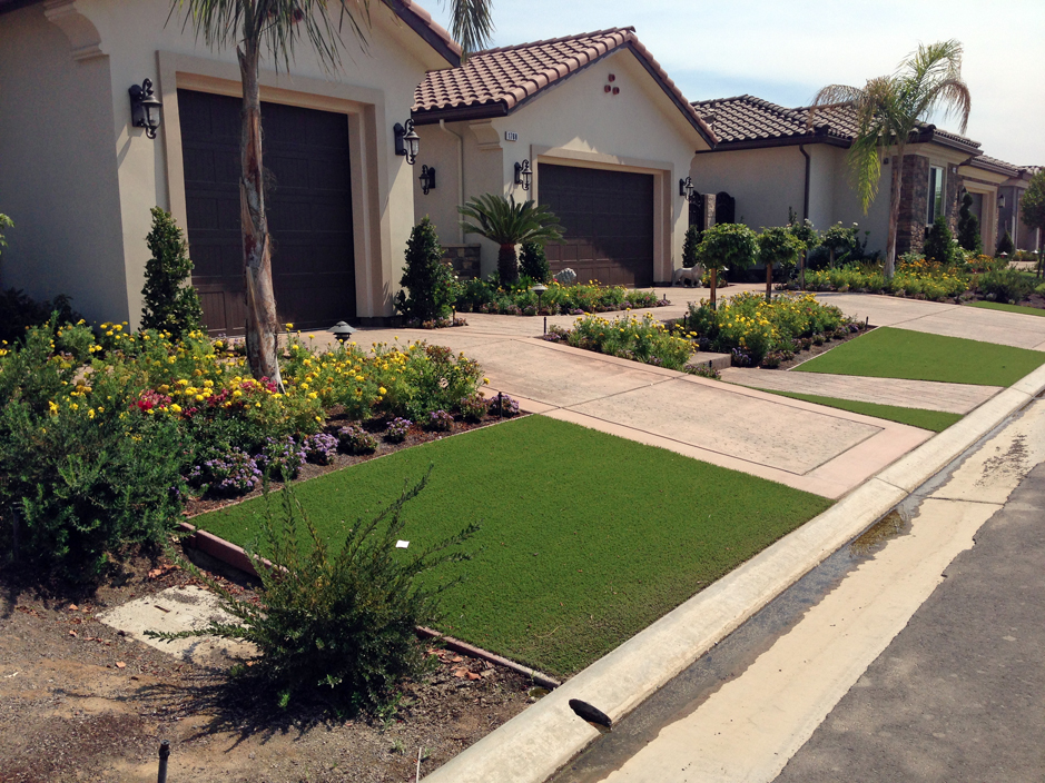 Grass Turf Okahumpka Florida Lawn And Landscape Small Front Yard