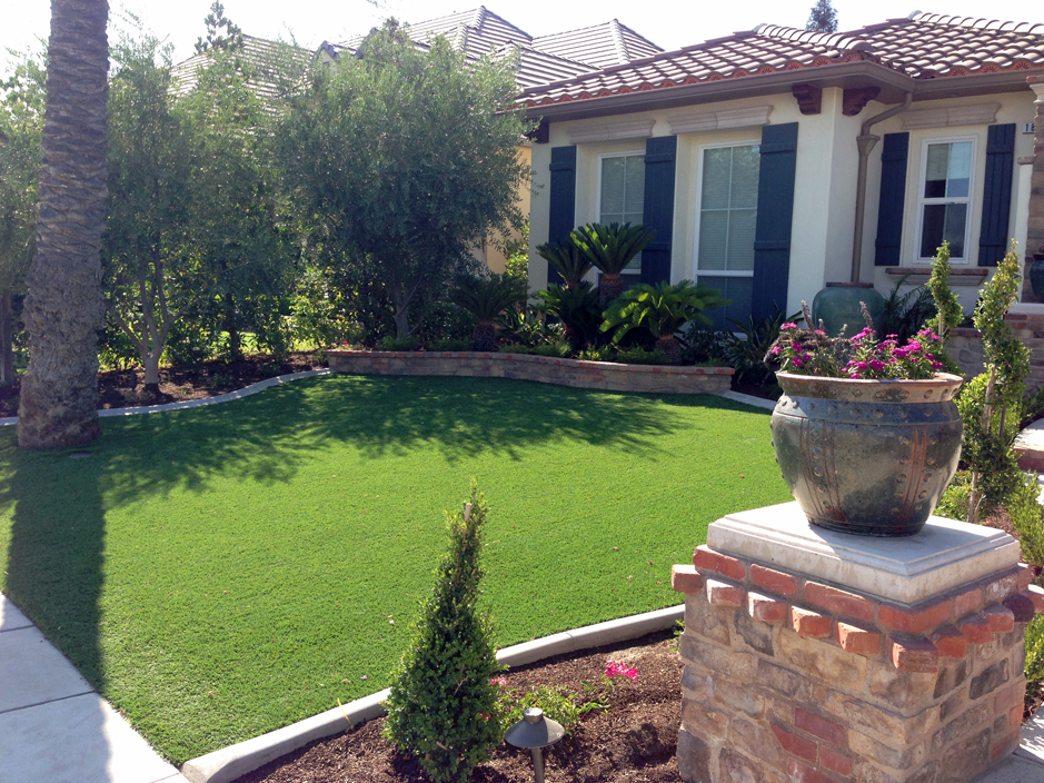 Green Lawn Madison Florida Landscape Design Small Front Yard