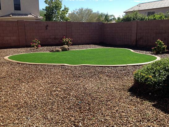 Artificial Grass Photos: Artificial Grass Carpet De Leon Springs, Florida Landscaping, Backyard Ideas