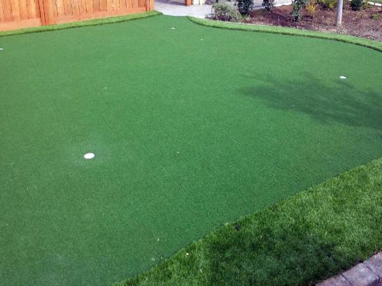 Artificial Grass Photos: Artificial Grass Carpet Edgewood, Florida Office Putting Green