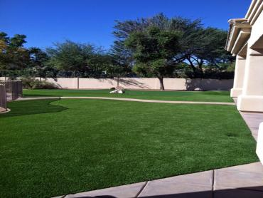 Artificial Grass Photos: Artificial Grass Carpet Inglis, Florida Gardeners, Front Yard Ideas