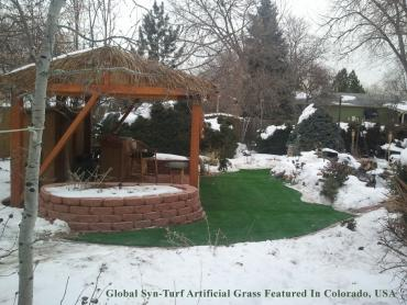 Artificial Grass Photos: Artificial Grass Carpet Macclenny, Florida Gardeners, Backyard