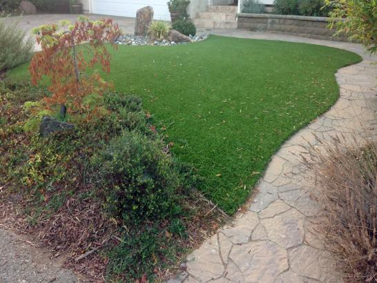 Artificial Grass Photos: Artificial Grass Carpet Waldo, Florida Dog Hospital, Backyard Design