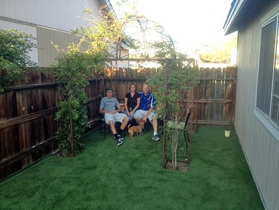 Artificial Grass Photos: Artificial Grass Carpet Weeki Wachee, Florida Dog Hospital, Backyards