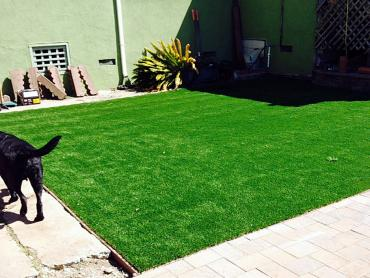 Artificial Grass Photos: Artificial Grass East Bronson, Florida Rooftop, Beautiful Backyards