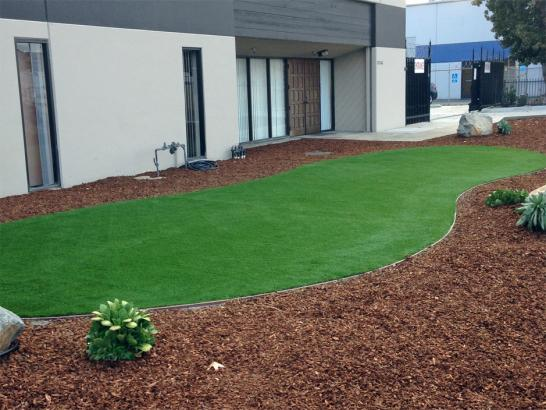 Artificial Grass Photos: Artificial Grass Installation Glen Saint Mary, Florida Backyard Playground, Commercial Landscape
