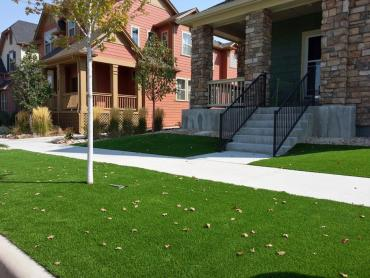 Artificial Grass Installation Saint Augustine, Florida Gardeners, Front Yard Ideas artificial grass