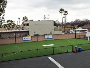Artificial Grass Photos: Artificial Grass Newberry, Florida Softball, Commercial Landscape