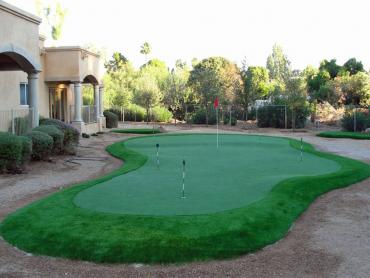 Artificial Grass Photos: Artificial Grass Shady Hills, Florida Putting Green Turf, Backyard Design
