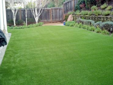 Artificial Grass Photos: Artificial Grass Wacissa, Florida Garden Ideas, Backyard Designs