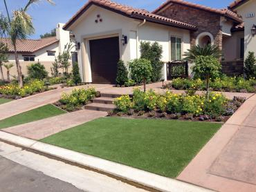 Artificial Grass Photos: Artificial Lawn Crystal River, Florida Landscape Rock, Small Front Yard Landscaping