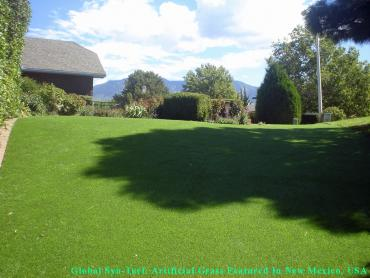 Artificial Lawn Lakeside, Florida Landscape Design, Backyard artificial grass