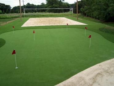 Artificial Grass Photos: Artificial Lawn Pine Ridge, Florida Landscape Design, Backyard Garden Ideas