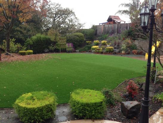 Artificial Grass Photos: Artificial Lawn Windermere, Florida Design Ideas, Backyard Ideas