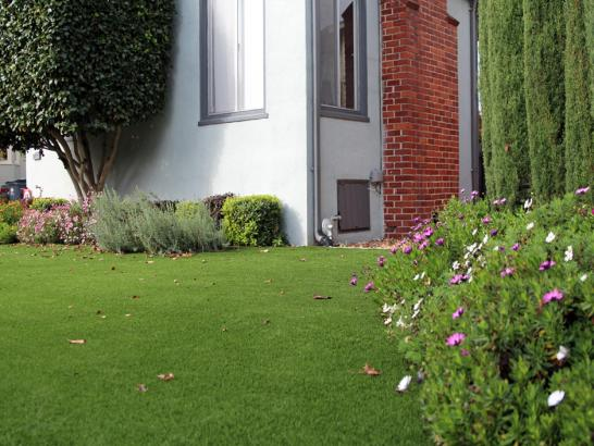 Artificial Grass Photos: Artificial Lawn Winter Garden, Florida Backyard Playground, Front Yard Landscape Ideas