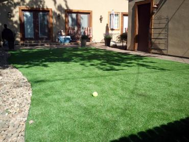 Artificial Grass Photos: Artificial Turf Cost Celebration, Florida Roof Top, Beautiful Backyards