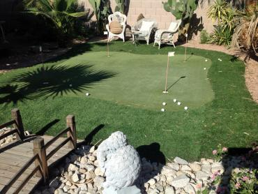 Artificial Grass Photos: Artificial Turf Cost Edgewater, Florida Design Ideas, Backyard Landscape Ideas