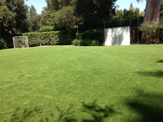Artificial Grass Photos: Artificial Turf Cost Fern Park, Florida High School Sports, Backyard Ideas