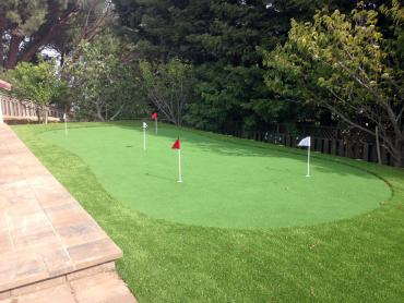 Artificial Grass Photos: Artificial Turf Cost Inglis, Florida Indoor Putting Green, Small Backyard Ideas