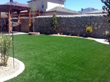 Artificial Grass Photos: Artificial Turf Cost Sawgrass, Florida Paver Patio, Backyard Landscape Ideas