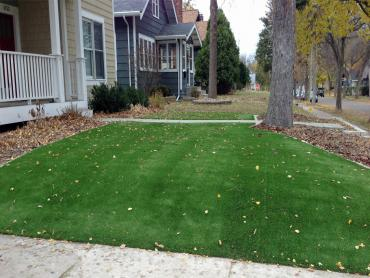 Artificial Grass Photos: Artificial Turf Cost Union Park, Florida Landscaping Business, Front Yard Design