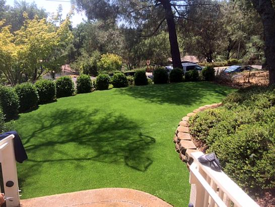 Artificial Grass Photos: Artificial Turf Cost Wiscon, Florida Roof Top, Backyard Landscaping