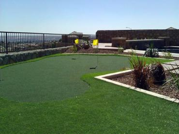 Artificial Grass Photos: Artificial Turf East Williston, Florida Indoor Putting Greens