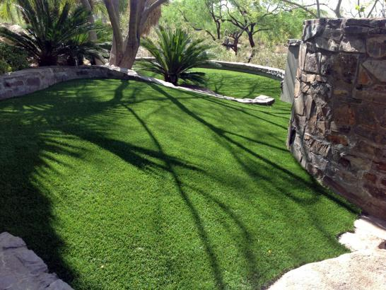 Artificial Grass Photos: Artificial Turf Greenville, Florida Hotel For Dogs
