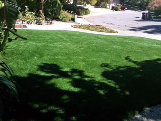 Artificial Grass Photos: Artificial Turf Installation Clermont, Florida Lawns, Landscaping Ideas For Front Yard