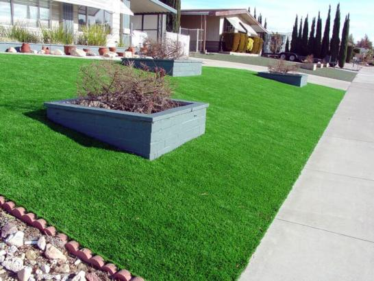 Artificial Grass Photos: Artificial Turf Installation Deltona, Florida City Landscape, Landscaping Ideas For Front Yard