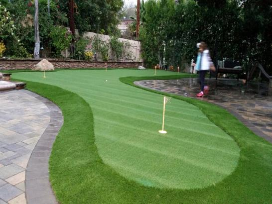 Artificial Grass Photos: Artificial Turf Installation Neptune Beach, Florida Diy Putting Green, Backyard Landscape Ideas