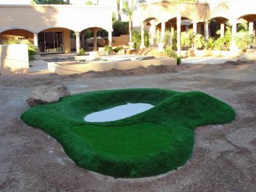 Artificial Grass Photos: Artificial Turf Installation Weeki Wachee Gardens, Florida Diy Putting Green, Commercial Landscape