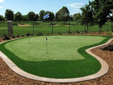 Artificial Grass Photos: Artificial Turf Installation White Springs, Florida Indoor Putting Greens, Backyard Designs