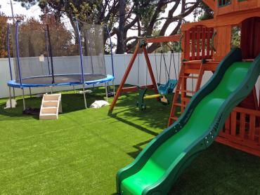 Artificial Grass Photos: Artificial Turf Installation Williston, Florida Athletic Playground, Small Backyard Ideas