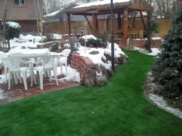 Artificial Grass Photos: Artificial Turf Keystone Heights, Florida Home And Garden, Backyard Landscape Ideas