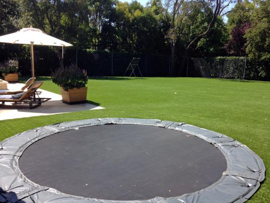 Artificial Grass Photos: Artificial Turf Pine Castle, Florida Soccer Fields, Backyard Landscaping