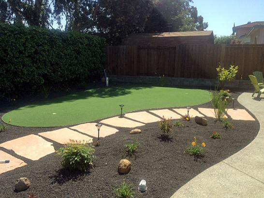 Artificial Grass Photos: Artificial Turf Pine Island, Florida Indoor Putting Greens, Backyard Landscaping