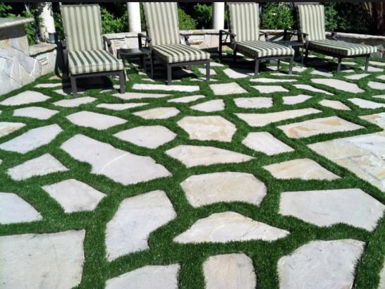 Artificial Grass Photos: Artificial Turf Silver Springs Shores, Florida Gardeners, Backyard Landscaping