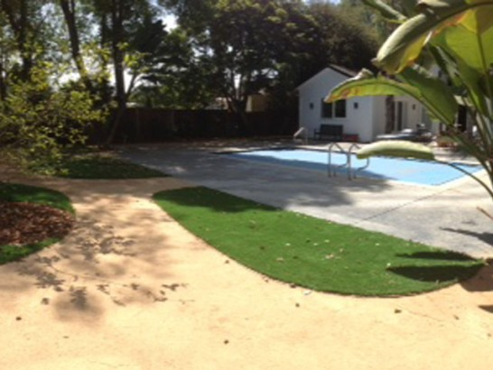 Artificial Grass Photos: Artificial Turf Wiscon, Florida Landscaping Business, Natural Swimming Pools