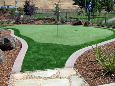 Artificial Grass Photos: Best Artificial Grass Pomona Park, Florida Putting Green Grass, Backyard