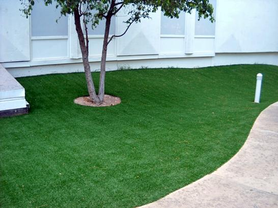 Artificial Grass Photos: Fake Grass Azalea Park, Florida Backyard Deck Ideas, Commercial Landscape