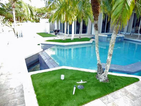Artificial Grass Photos: Fake Grass Bell, Florida Lawn And Landscape, Backyard Designs