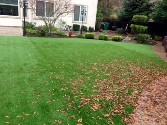Fake Grass Carpet Buenaventura Lakes, Florida Paver Patio, Backyard Ideas artificial grass