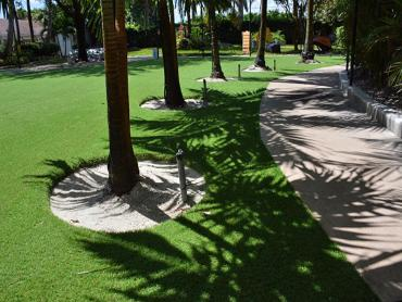 Fake Grass Carpet Hawthorne, Florida Landscaping, Commercial Landscape artificial grass