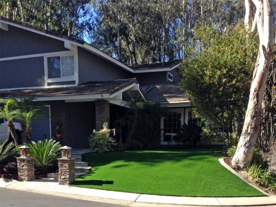 Artificial Grass Photos: Fake Grass Carpet Jennings, Florida Landscaping, Front Yard Landscape Ideas