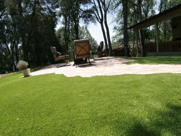 Artificial Grass Photos: Fake Grass Carpet Minneola, Florida Home And Garden, Backyards