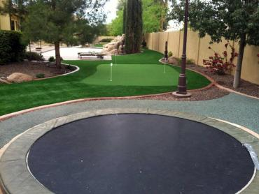 Artificial Grass Photos: Fake Grass Carpet Oak Ridge, Florida Lawn And Garden, Backyard