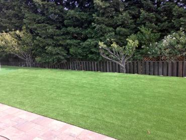 Artificial Grass Photos: Fake Grass Carpet Okahumpka, Florida Landscaping, Backyard Landscaping Ideas